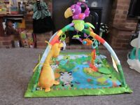 Fisher- Price rainforest play mat