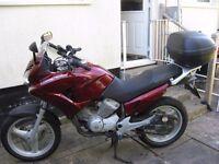 Excellent 125cc learner legal adventurer bike