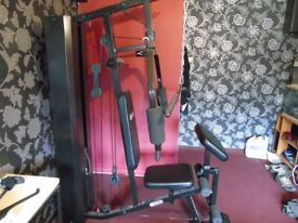 dynamix home gym
