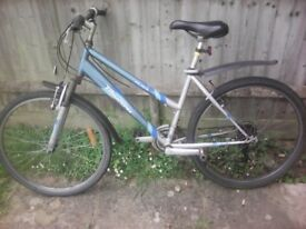 Raleigh Triumph Roma Mountain bike adult unisex bicycle front suspension excellent condition