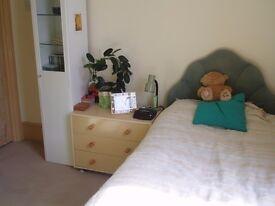 Comfortable Single Room, Westcliff on Sea, near Southend , Essex (no fees)