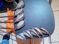 Pinseeker HBS Aldridge 3,4,5,6,7,8,9,pw,sw.irons.