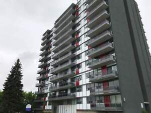 Sussex Court Apartments - 1 Bedroom Apartment for Rent