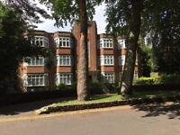 Large 3/4 bed flat sleeps 6-8 5 mins town centre Asda university Lansdowne campus opp Beach parking