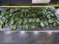 Artificial Leaf Hedges - 9 in total