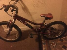 "Kids mountain Bike Gary Fisher Cosmo 20"" ages 6-12,local delivery available"