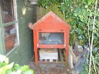 Guinea Pig/Rabbit/Rat hutch