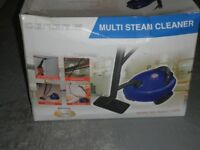 multi steam cleaner