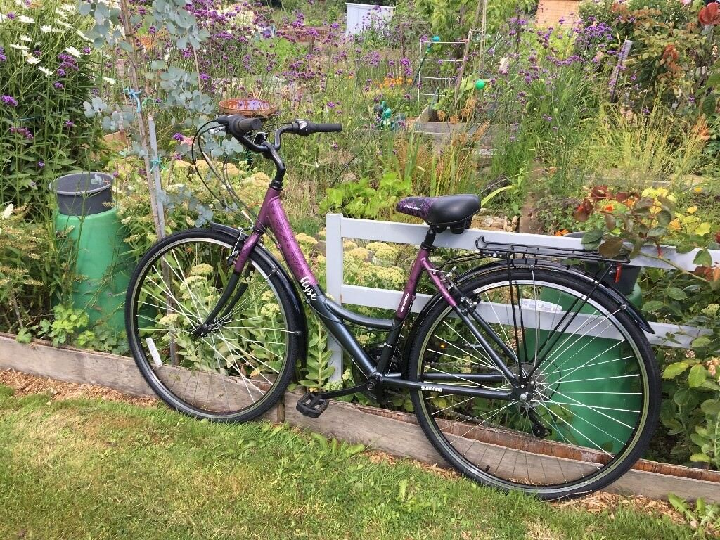 Ladies purple bicycle, as new, will include a new cycle lock..