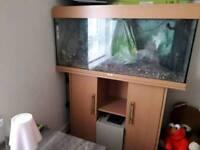3 & half foot fish tank