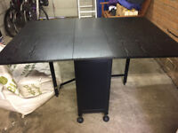 Dining Table with folding chairs