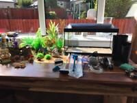2ft Fish tank and accessories ****** NOW SOLD *******