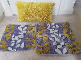 Sofa cushion and covers