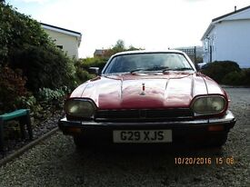 CLASSIC JAGUAR XJS FOR SALE