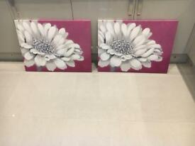 Two dunelm canvas flower pictures