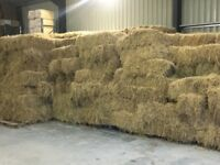 Small Bale Hay June 2017 Barn Stored. 970 available Ragwort free.