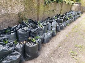 TopSoil. Bagged. Free to Collect.