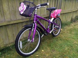 Girls Ridgeback 7-speed mountain bike - excellent condition