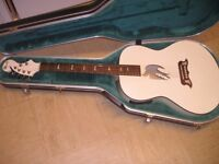 Lindo White Dove - Electro Acoustic guitar - Solid Top - PreAmp / Tuner / XLR - Pro Set Up - RRP£349