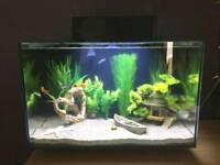 21L Platform Fish Tank with Accesories