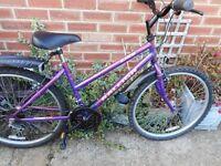 ladies purple 17 inch frame raleigh zing bike with lock