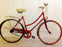 Els wick city bike come with Mudguard rack, Chain guard, serviced