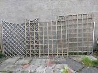 Various fence panelling and trellis ..job lot