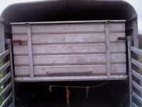 full set sheep decks for 10 x 6 ifor williams white roof cattle trailer, v.good condition.