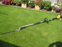 Lanxcape Long reach hedge cutters
