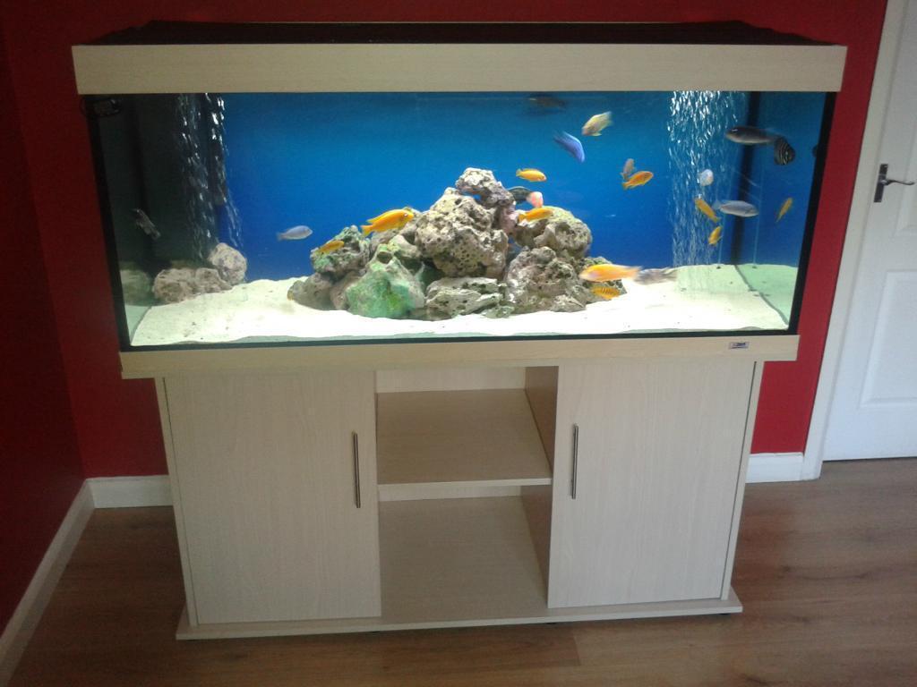 Freshwater aquarium fish capacity - Very Big Aquarium Fish Tank 5 Ft 600 Liters Capacity Not Juwel