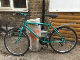 Raleigh road / hybrid vintage bike size small green