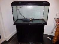 Fish tank with all equipment