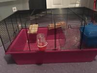 Starter cage