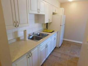 Willow Properties  - INCLUDED amost everything Apartment for...