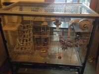 Rat/Degu cage