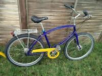 Pashley tube rider Tropical fish hybrid bike