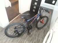 KIDS CARRERA BICYCLE WITH SUSPENSION