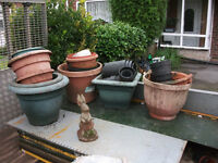 Free plant pots to collect