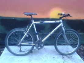 Claud Butler Pine Lake Aluminium Large Mountain Bike