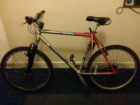 Baracuda Adult Mountain Bike