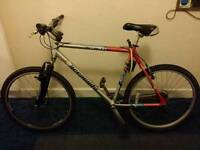 Baracuda Adult Mountain Bike