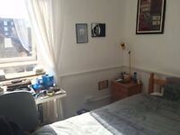 Spare student room for rent