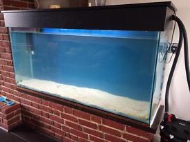 Tank aquarium