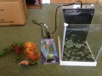 Fish tank with accessories and built in filter