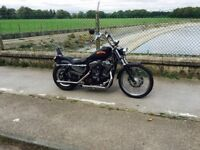 Harley davidson xl1200c custom sportster £3300 ovno mot till july