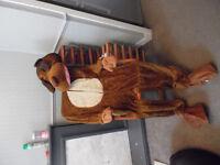 Mens Moose Fancy Dress Costume