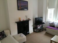 Two bedroomed furnished flat - Tremadoc Road, Clapham, SW4