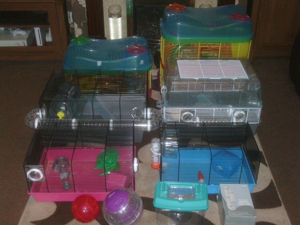 HAMSTER CAGES WITH TUBES AND WHEELS £15 AND £10