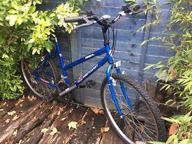 Westcoast Female Bike