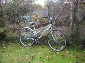 ladies barracuda aluminium hybrid,17 in frame,very lightweight